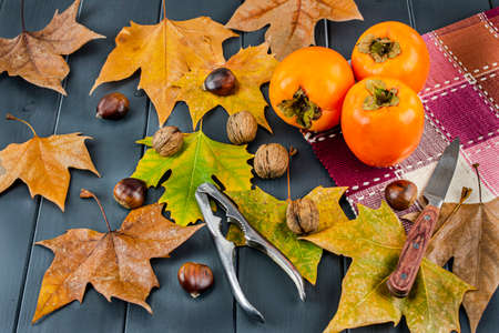 Autumn leaves of various colors with nuts, chestnuts, hazelnuts and almonds on a gray wooden board, persimmons or kakis, opener and knife 写真素材