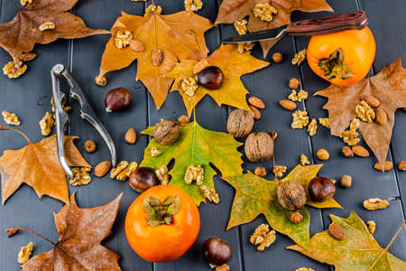Persimmons with autumn leaves and fruits such as chestnuts, hazelnuts, walnuts and almonds, with an opener and a knife on gray wooden board