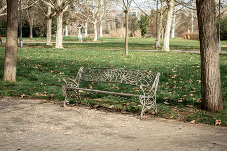 Gray wrought iron bench, with no one to occupy it, located in a park with a lot of grass and trees in autumnal atmosphere 版權商用圖片