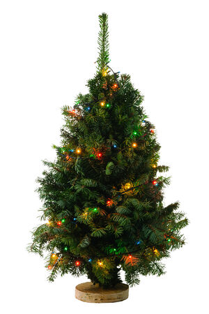 Green Christmas tree with garland isolated on white background