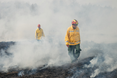suppression: BOYARKA, UKRAINE - 27 MART 2015: Firefighter or firemen on agriculture land after fire. It was demonstration training of forest fire fighters and students on suppression of surface fire of medium intensity on Boyarka forest research station in Ukraine.