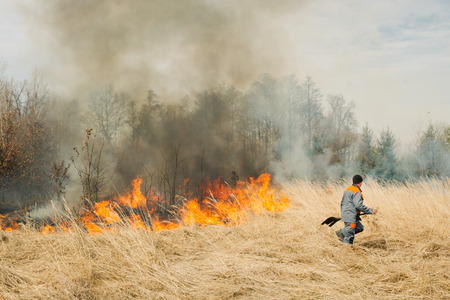 suppression: BOYARKA, UKRAINE - 27 MART 2015: Firefighter or firemen on agriculture land fire. It was demonstration training of forest fire fighters and students on suppression of surface fire of medium intensity on Boyarka forest research station in Ukraine. Editorial