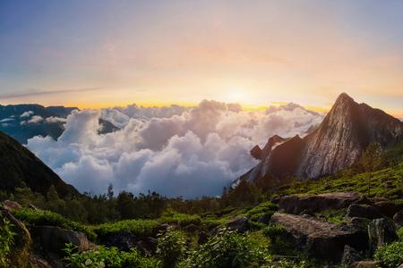 Vroeg in de ochtend in de bergen bij zonsopgang met vloeiende wolken. Bekijk op meesapulimala piek in West-Ghats. Kolukkumalai thee goed punt schieten. Kerala, Tamilnadu, India Stockfoto