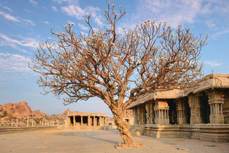 karnataka culture: View on ancient ruins and courtyard of Vittala temple on sunset in Hampi, Karnataka, India