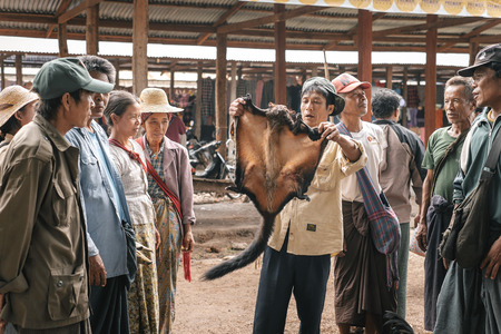 bargaining: Loikaw, Myanmar - May 25, 2016: Traditional scene on Deenawso market in Myanmar. Group of people bargaining and selling hunted wild animals Editorial