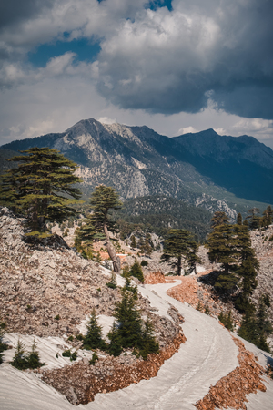 Magnificent view of pure, untouched wild nature, high in the mountains of Turkey