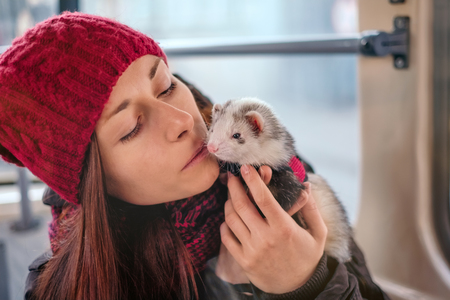 Sensual young woman with long hair hugging her pet ferret on a tram.Woman and a pet concept. Stock Photo