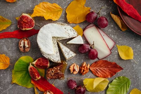 Taste motives and mood. Set of cheese in autumn leaves with honey, fruit and herbal on dark and gray stone background Stock fotó - 135958425