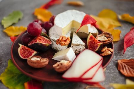 Taste motives and mood. Set of cheese in autumn leaves with honey, fruit and herbal on dark and gray stone background