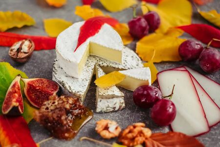 Taste motives and mood. Set of cheese in autumn leaves with honey, fruit and herbal on dark and gray stone background Stock fotó - 135958497