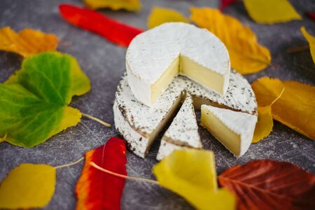 Taste motives and mood. Set of cheese in autumn leaves on dark and gray stone background Stock fotó