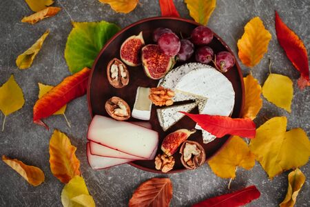Taste motives and mood. Set of cheese in autumn leaves with honey, fruit and herbal on dark and gray stone background Stock fotó - 135958513