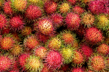 of full frame close up of fourty rambutan red hairy circular fruits stacked ontop of each other