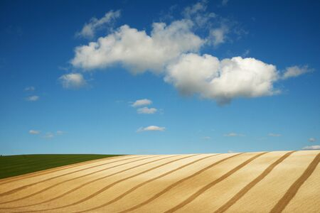 Curved lines and graphical shapes of a ploughed field with a big blue sky and white fluffy clouds of the rolling farmland on the Sussex downs, Sussex, England, UK