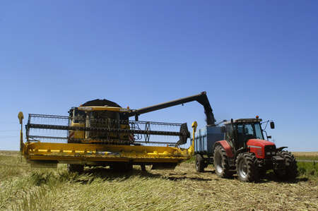 the harvest of colza with machines like a reaping-machine threshing-machine and tractor Stock fotó