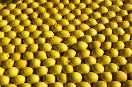 menton: lemon Menton 2011 celebrates Stock Photo