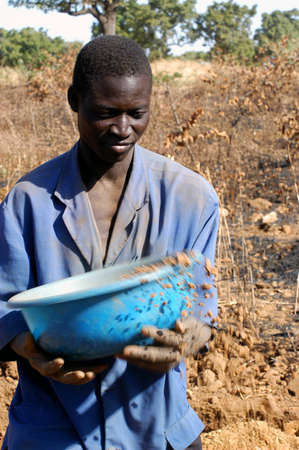 burkina faso: To the goldmine of Poura the gold diggers come from everywhere in the hope of finding a little gold after the season of the cultures. Women, children and men of very old are here in a universe of dust under a blazing sun. In Burkina Faso Faso the research Editorial