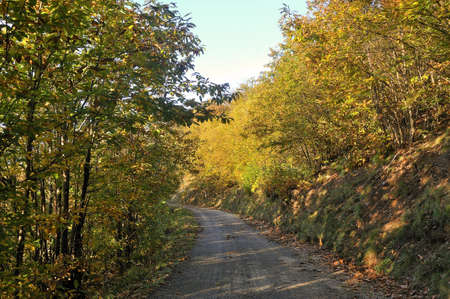 road in autumn in France in the Cevennes photo