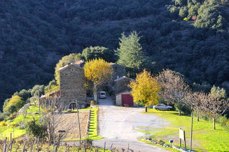 landscape of French autumn in the area of the Cevennes and the department of Gard.