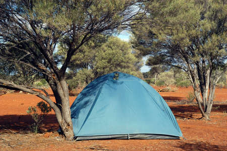 wilderness camping in the Australian bush Stock Photo - 17580699