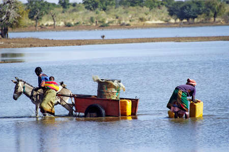 scarcity: filling and transportation of water bottles at lake is for women to irrigate crops