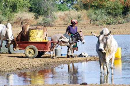 filling and transportation of water bottles at lake is for\ women to irrigate crops\