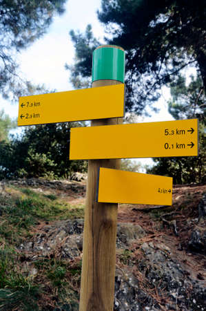 Signpost places and distance hiking trails in a French forest environment. photo