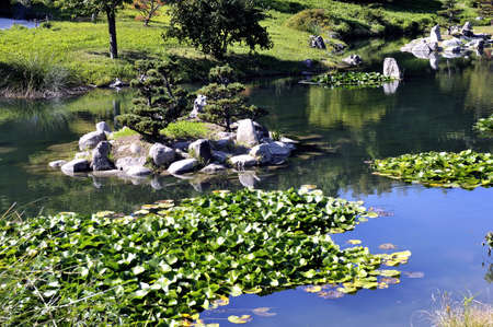 almost all: Japanese Garden Park Anduze bamboo where almost all species are represented and promoted in an Asian garden