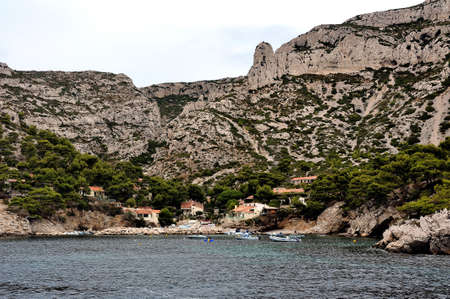 pine creek: Coastal landscape between Cassis and Marseille in the national park of the creeks Stock Photo