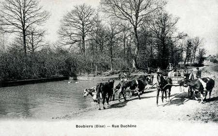 old postcard: old postcard of Boubiers, Duchene street