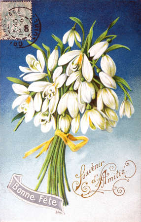 happy feast: old postcard flower to wish happy feast