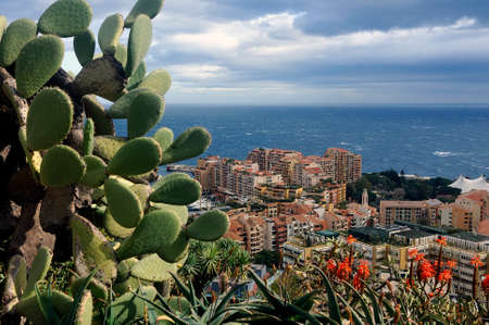 Aerial view of Monaco from the heights of the exotic garden with cactuses in the foreground
