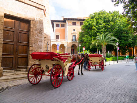 horse drawn carriage: Take a tour in a horse drawn carriage around the old town of Palma Spain