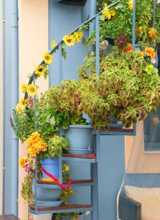 greek pot: Una scala a chiocciola decorata con fiori nel villaggio di Fiskardo sull'isola di Cefalonia in Grecia