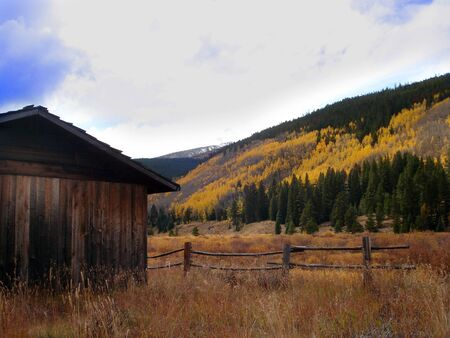 Barn, Fence and Aspens in Fall