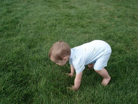 Toddler Boy Falls Down on the Green Grass Stock Photo