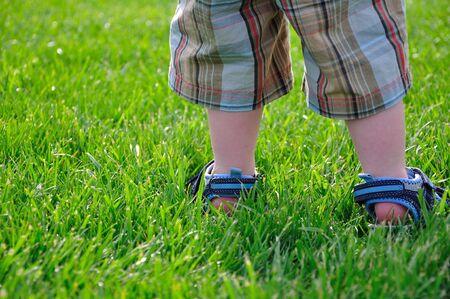 Toddler Feet in Green Grass photo