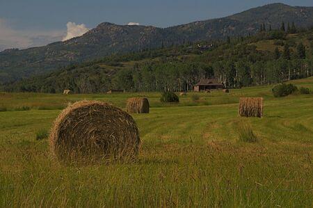 Colorado Hay Bales Stock Photo