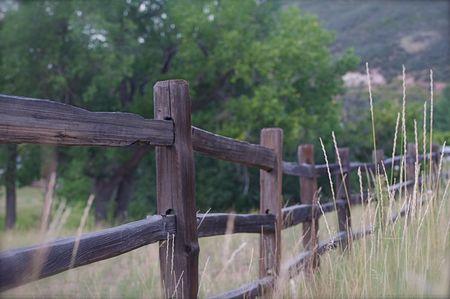 Old Split Rail Fence photo