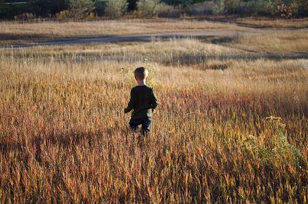 Little Boy Walking in Tall Grass