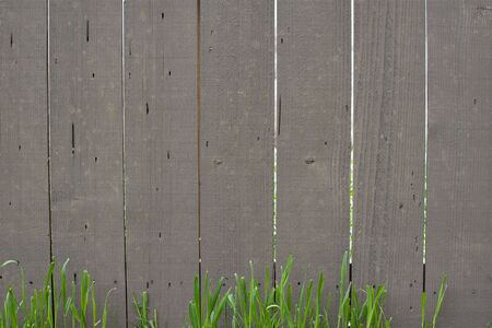 Wood Fence with Grass Background