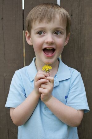 Little Boy Holds up a Flower Stock Photo