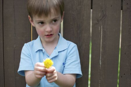 Little Boy with Flower in Front of Fence photo