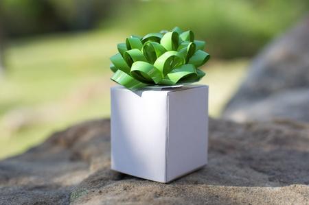Nature - Little White Gift Box