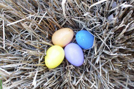 Spring - Nest of Easter Eggs