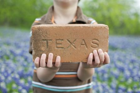 Texas Brick and Bluebonnets
