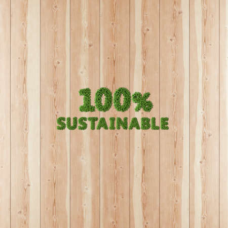 100 one hundred by one hundred Sustainable image formed by vegetation and wood. Stok Fotoğraf