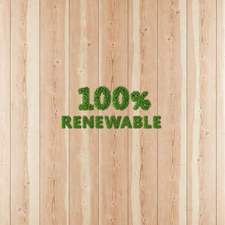 100 one hundred by one hundred Renewable image formed by vegetation and wood.