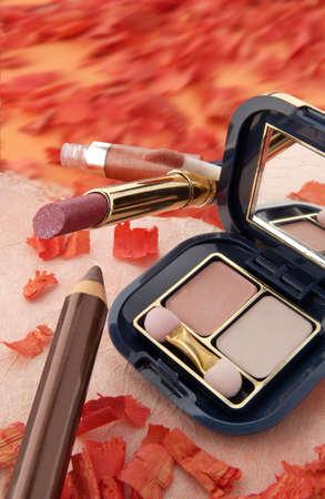 cremas faciales: Cosm�ticos, l�pices y sombras de la alta calidad para el maquillaje. Foto de archivo