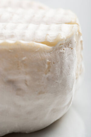 caprine: Goat cheese colse up Stock Photo